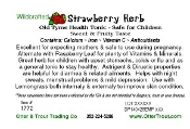 Strawberry Herb