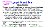 Lymph Gland Tea